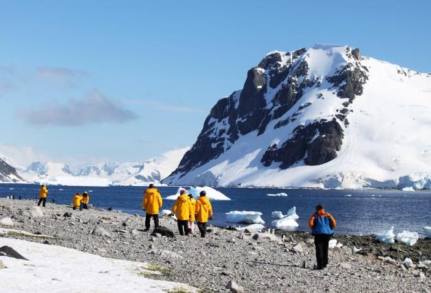 南極半島ハイライトを行く