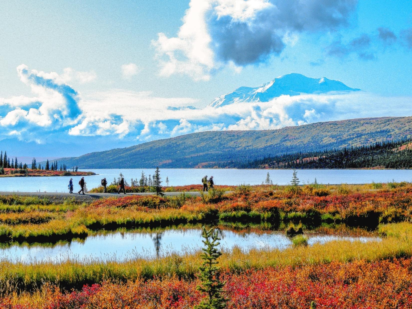 """""""偉大なるもの""""の意味にふさわしい北米最高峰Mt.デナリ(6191m)の雄姿"""