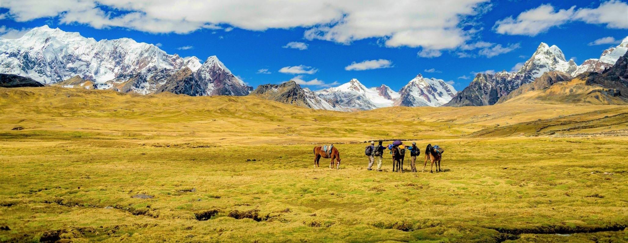 ペルー・アンデスの聖峰アウサンガテ山麓に広がる大草原を行く