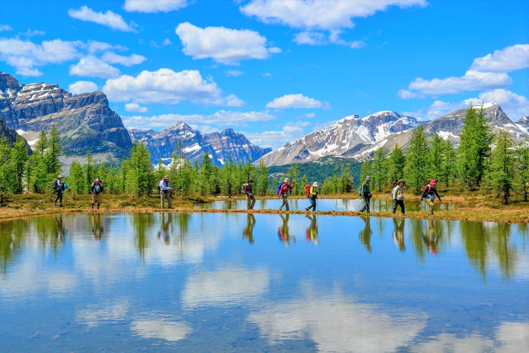 雄大なロッキーの山々を望むオフトレイルを行く