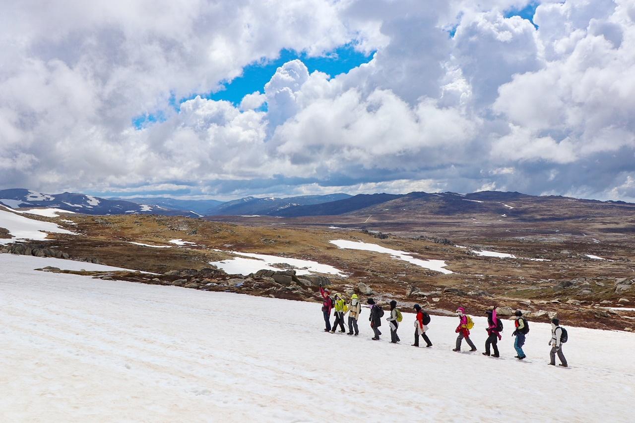 11月15日出発「オーストラリア大陸最高峰Mt.コジオスコ登頂と世界遺産ブルーマウンテンズ・ハイキング 7日間」