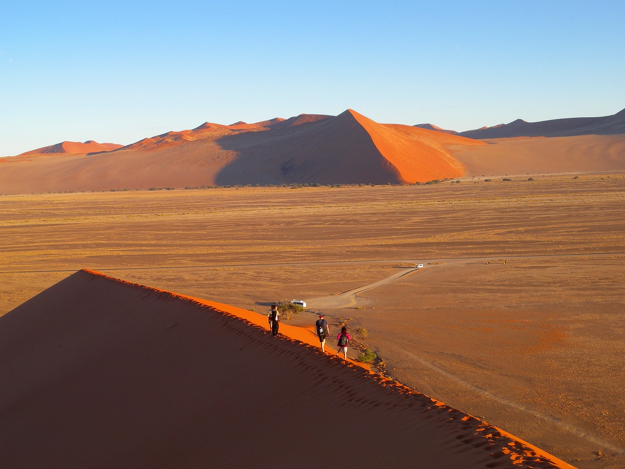 ナミブ砂漠の画像 p1_38