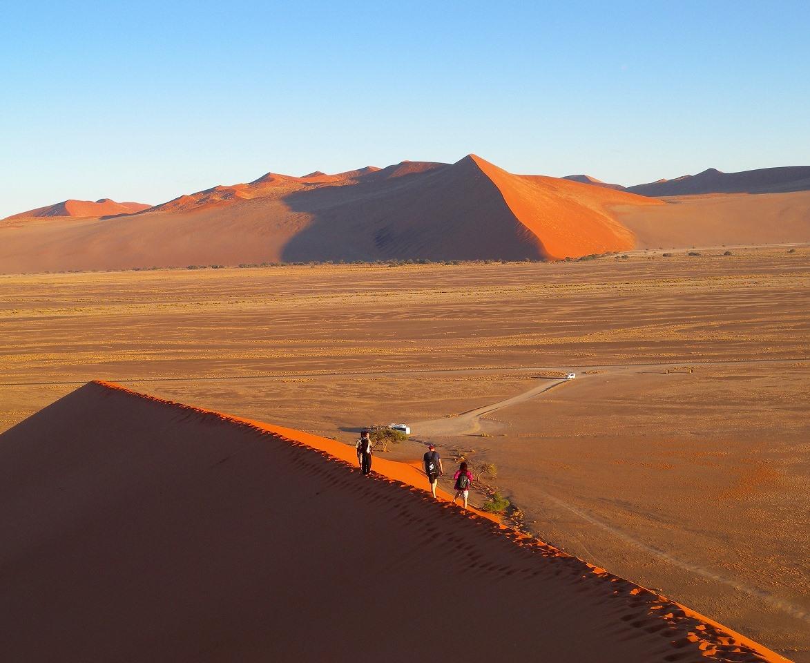 ナミブ砂漠のデューン(砂丘)に登ってきました