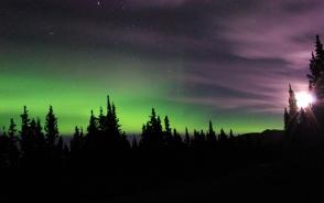 極北の夜空から舞い降りるオーロラ
