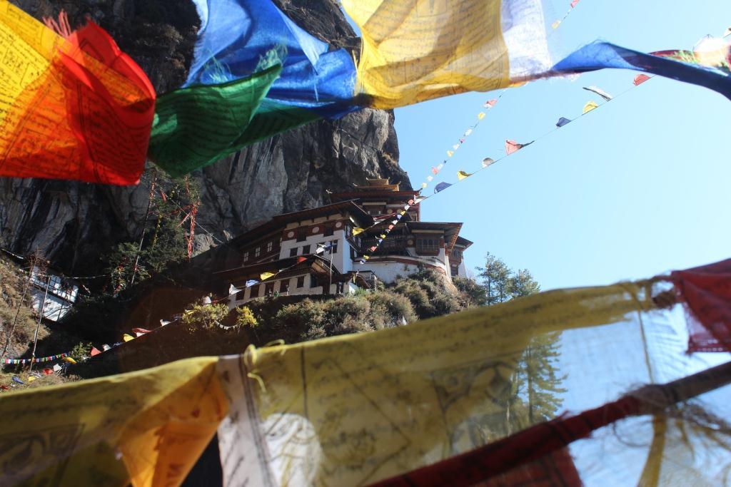 6月17日出発 ~日本・ブータン外交樹立30周年特別企画~ 「雷龍の国・ブータン 夏のフラワーハイキング 7日間」