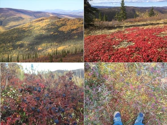 たった10日間の秋世界