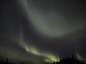 夜空に躍る神秘の光