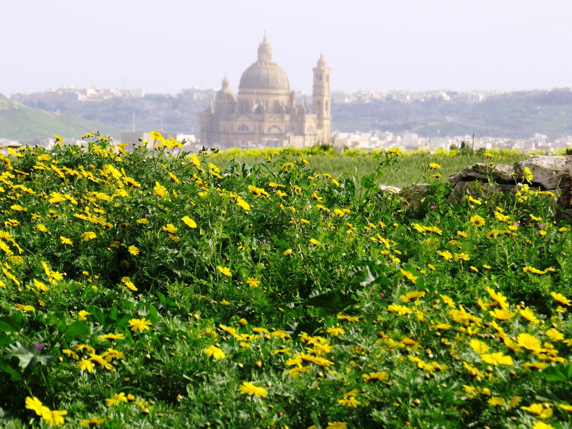 ゴゾ島、遠くヴィクトリアの大聖堂を望む