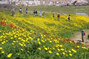3月11日出発「花のキプロス島 フラワー・ハイキングと世界遺産探訪 8日間」