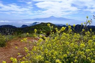 ゴメラ島から眺めるテイデ山