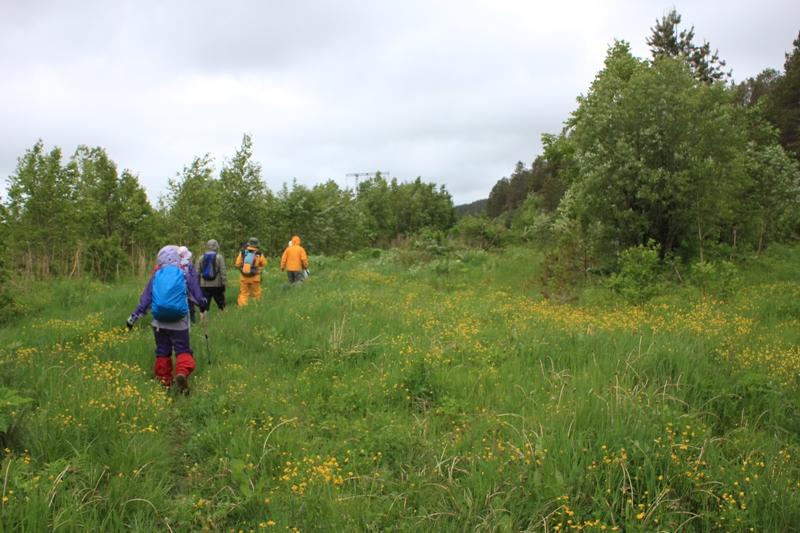 6月23日出発 「サハリン南部の名峰チェーホフ山登頂とフラワーハイキング 5日間」