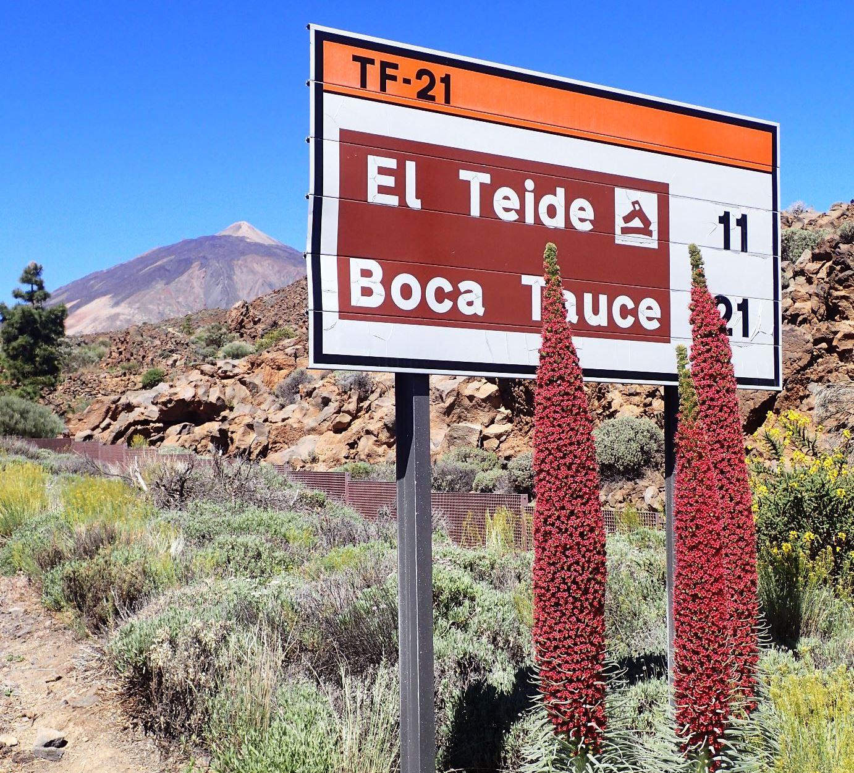 5月26日出発「スペイン最高峰テイデ山(3,718m)登頂と魅惑のカナリア諸島 9日間」