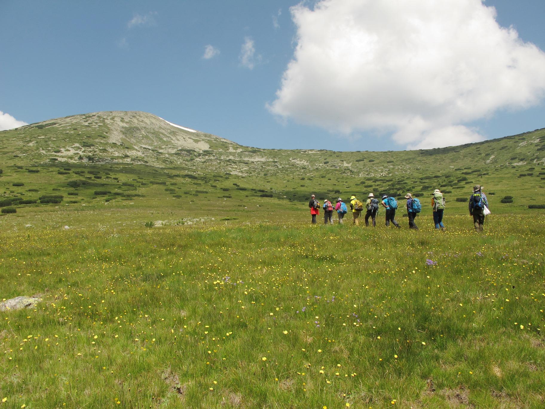牧草地帯を抜け、岩稜帯核心部へと標高をか