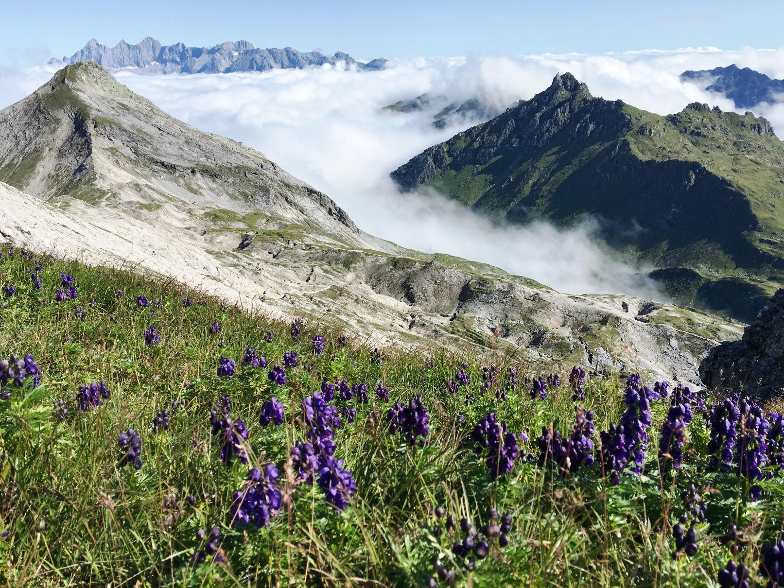 ダハシュタイン山脈を望む