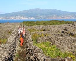 9月23日出発「ポルトガル、魅惑の島アゾレス諸島ハイキングと古都ポルト 9日間」