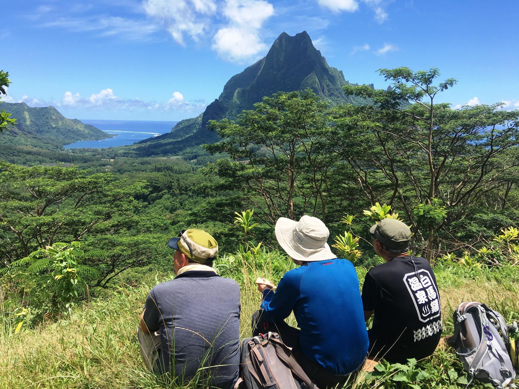 タヒチのモーレア島は急峻な山々が多い