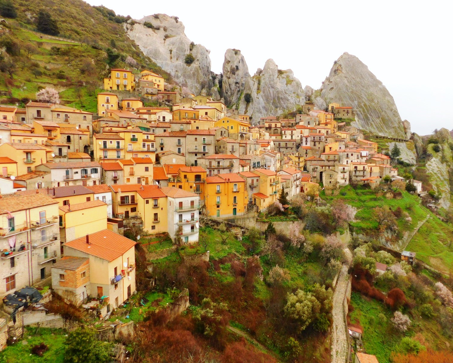 3月7日出発「至福の南イタリア・ハイキング 紺碧の海と断崖、小さな街を巡る旅 9日間」