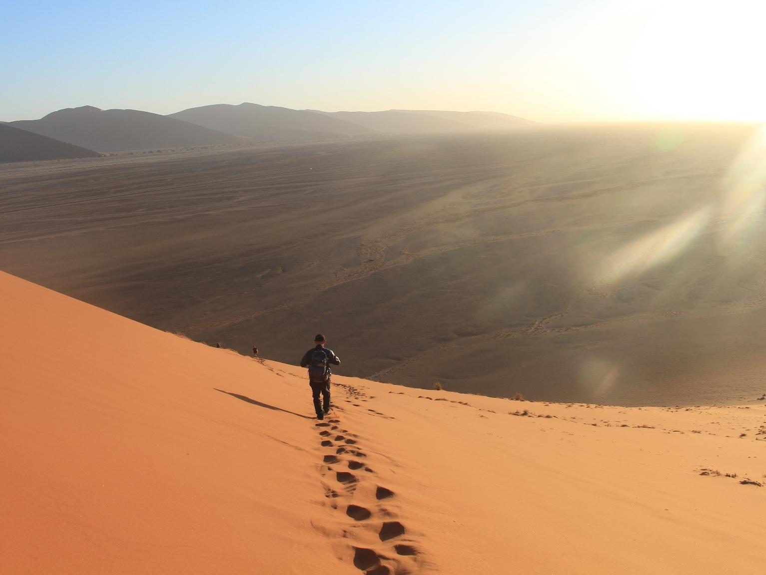 3月14日出発「南部アフリカ2つの世界自然遺産ナミブ砂漠とケープ半島ハイキング 10日間」