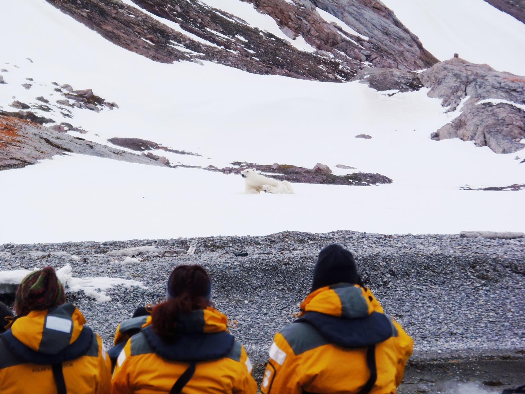 6月2日出発「北極圏・スピッツベルゲン島探検クルーズ 13日間」