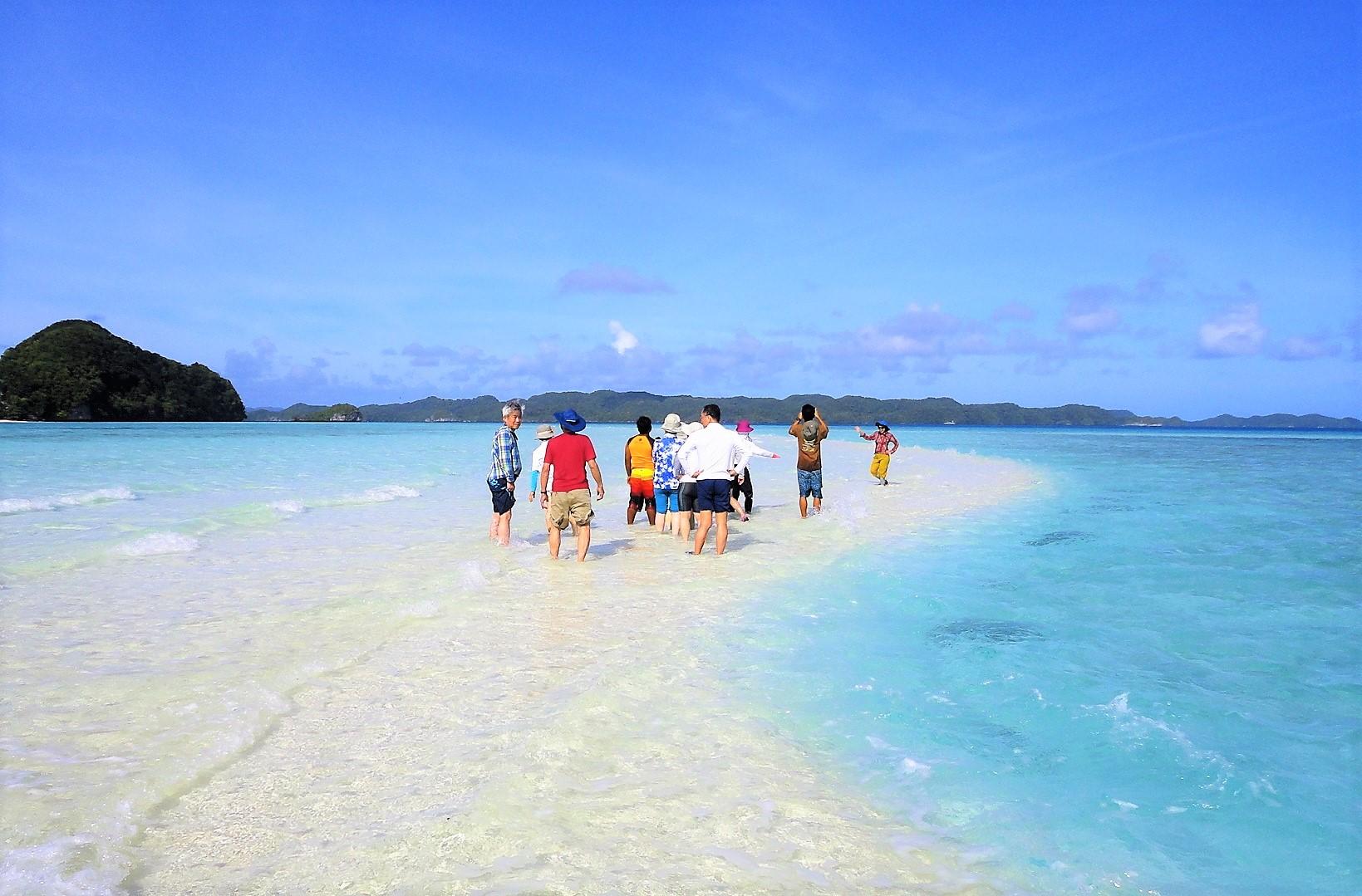 2月24日出発「南の島の大自然&歴史探訪の旅 パラオ満喫 6日間」