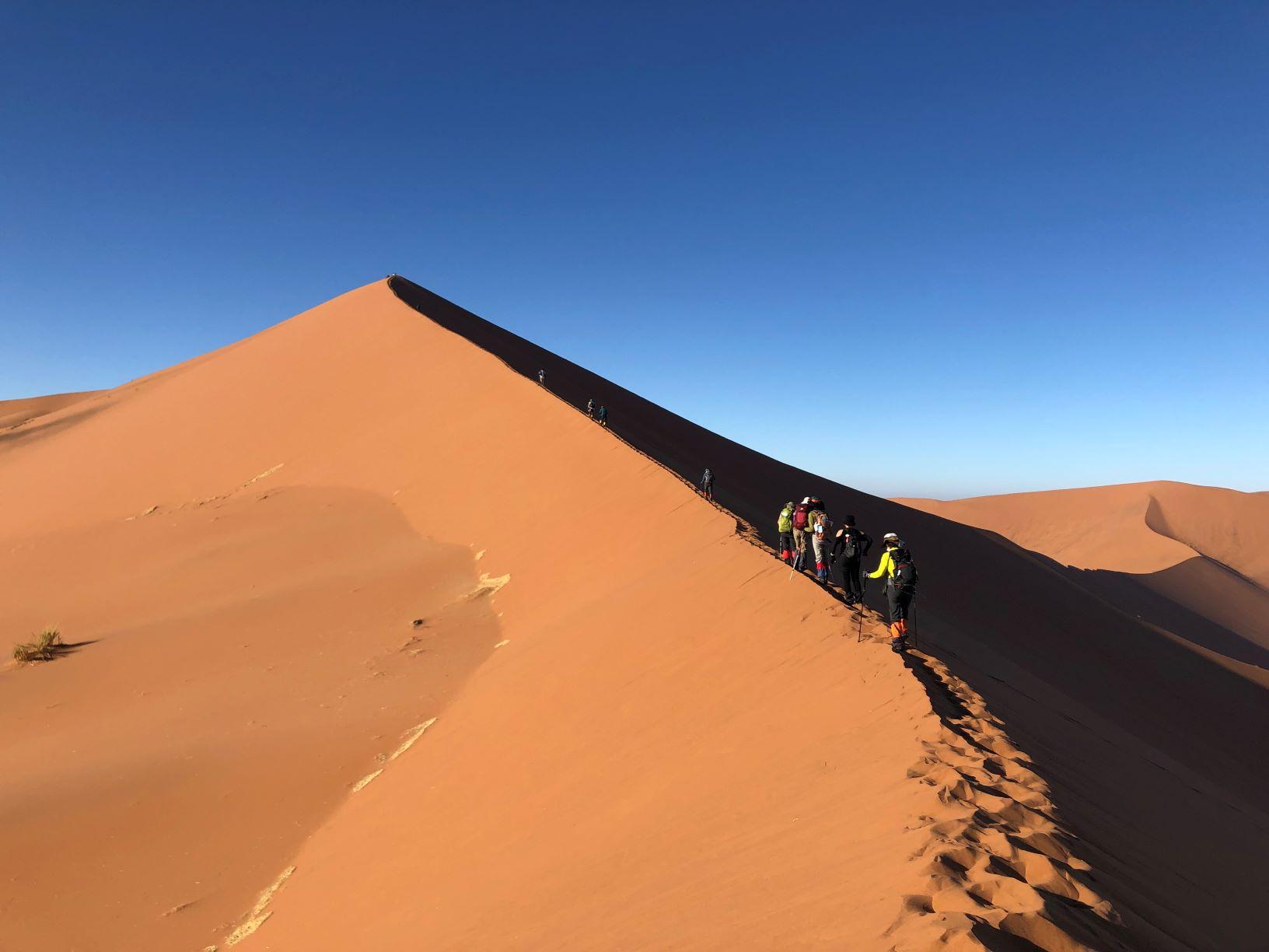 3月7日出発「南部アフリカ2つの世界自然遺産 ナミブ砂漠とケープ半島ハイキング 10日間」