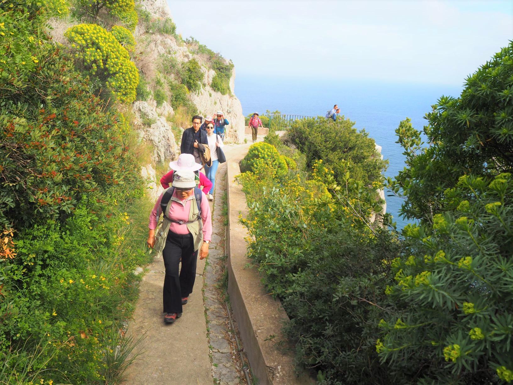 カプリ島海岸沿いハイキング