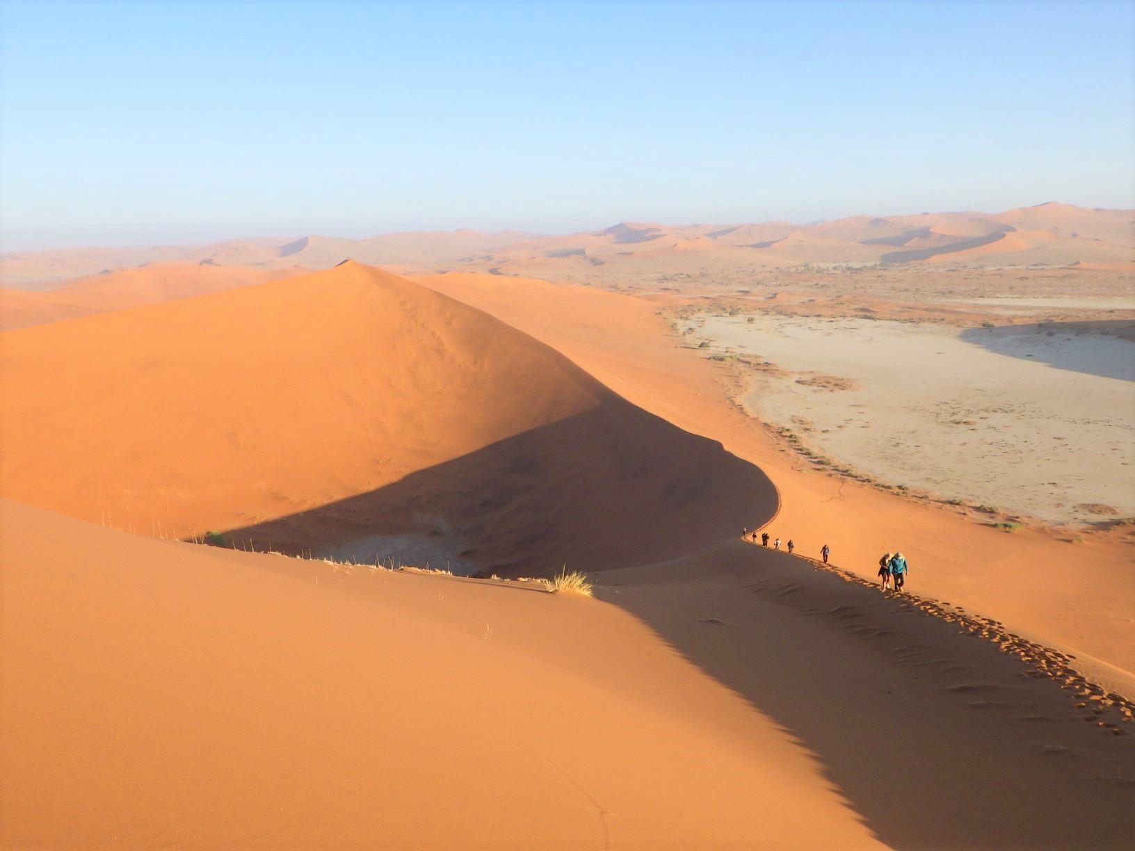 壮大なナミブ砂漠