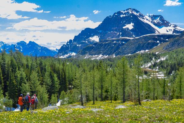 迫力の展望が日帰りハイキングで満喫できる