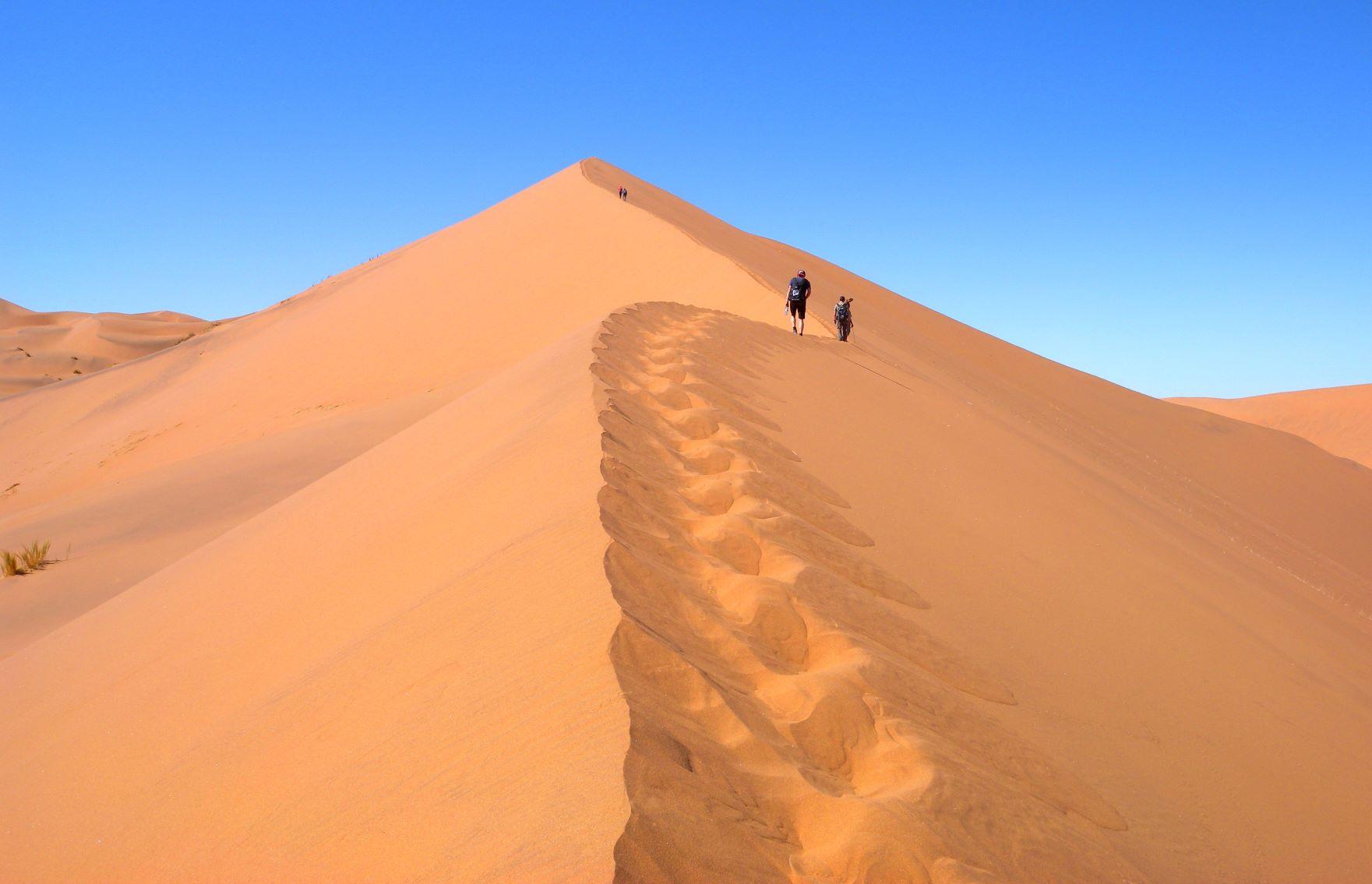 美しい砂丘の稜線をゆく