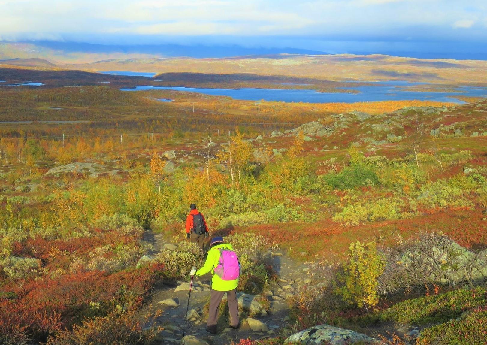 紅葉を楽しみながらのハイキング