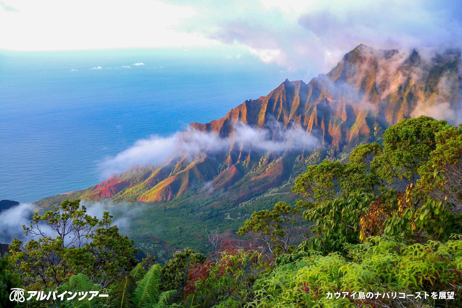 【エリア紹介】 自然の宝庫・ハワイ諸島