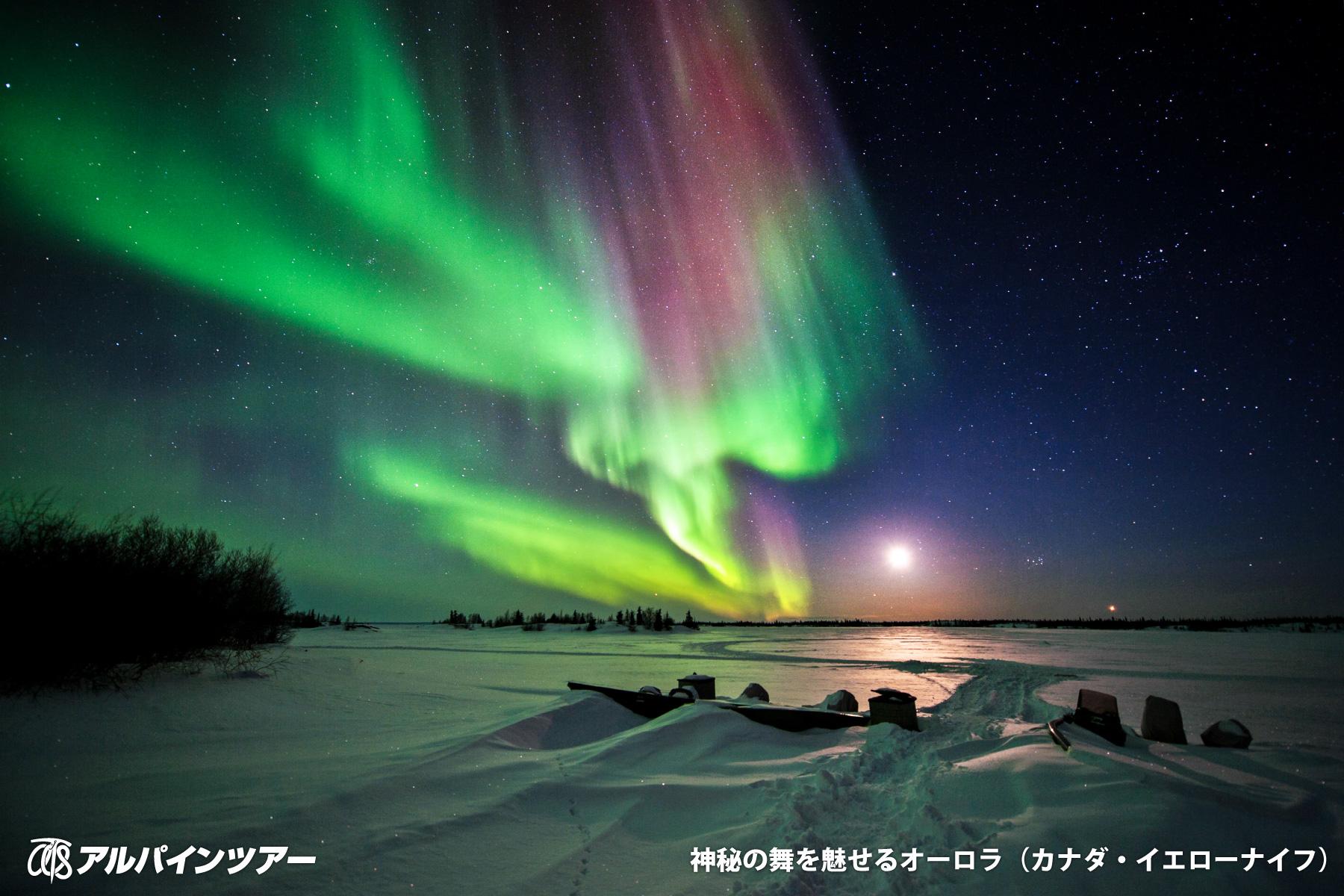 【今日の絶景】 夜空に舞う神秘のオーロラ