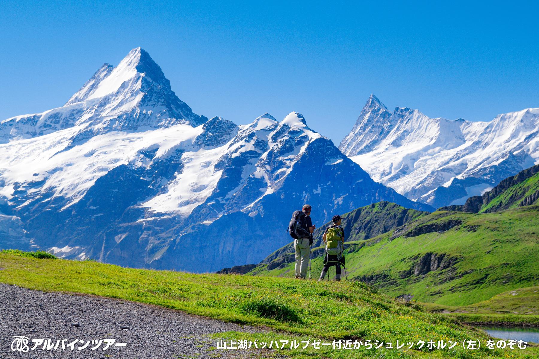 【今日の名峰】 ユングフラウ地方の隠れた名峰  シュレックホルン
