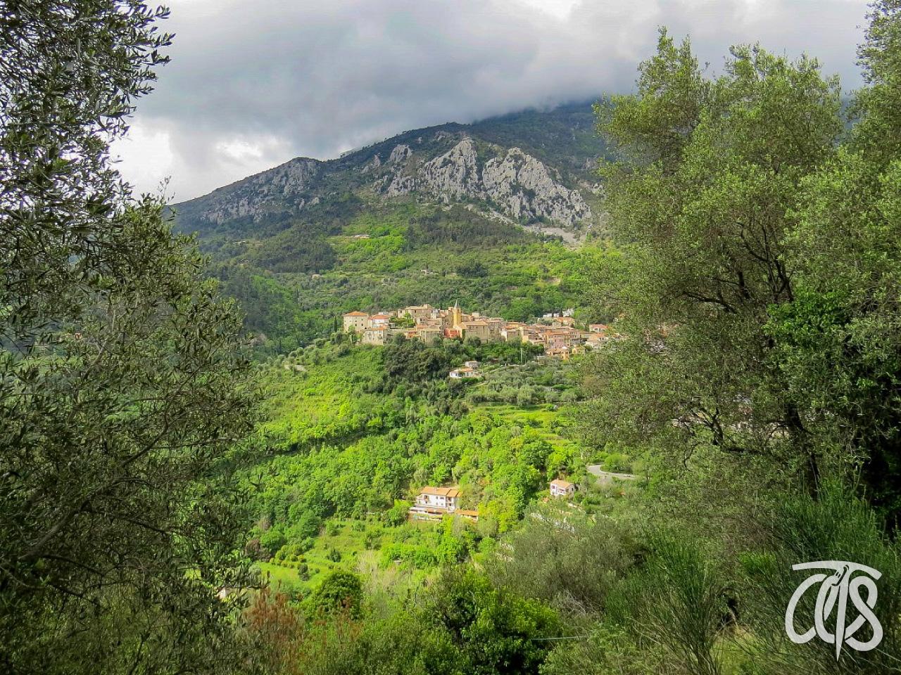 ゴルビオ村
