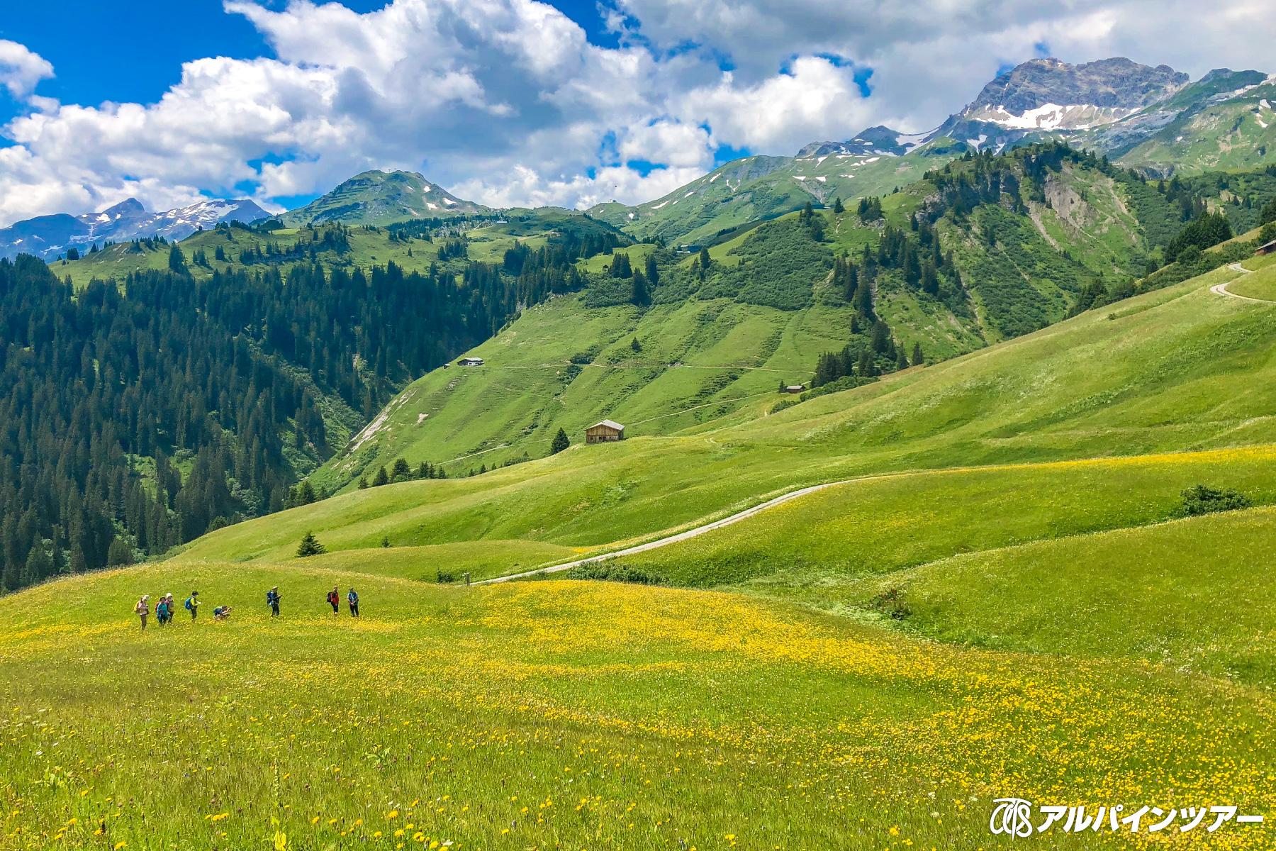 【今日の絶景】 一面に花咲くレッヒ(オーストリア)