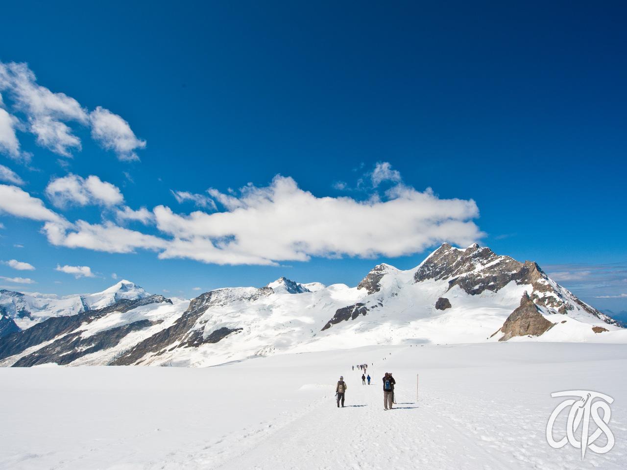 アレッチ氷河源頭部をハイキング