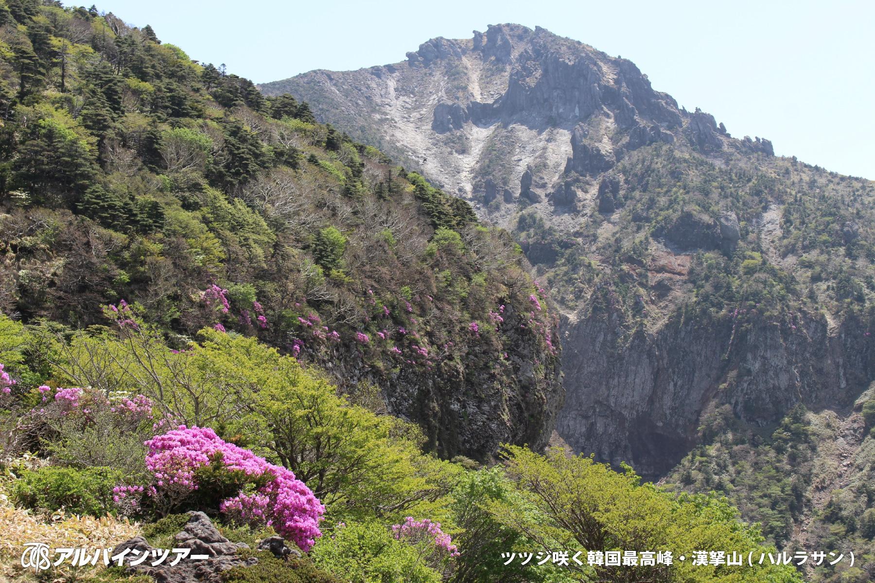 【エリア紹介】 韓国最高峰・漢拏山(ハルラサン)