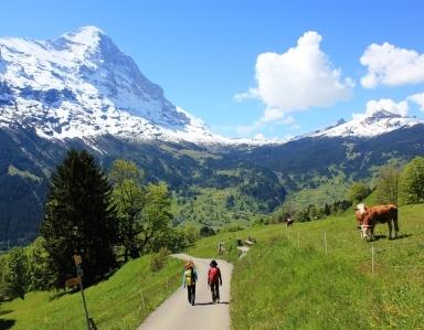 花いっぱいの山麓の美しい風景を楽しむ、春のスイス・アルプス・ハイキング