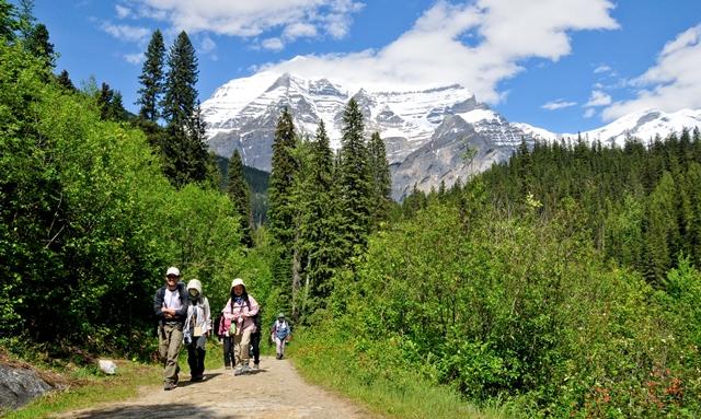 カナディアン・ロッキー最高峰Mt.ロブソンの展望を満喫する初夏のカナダ