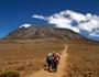 【新規増設】 短期間で効率よくキリマンジャロ登頂に挑戦!