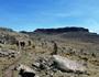 エチオピア最高峰ラスダシャン登頂とラリベラ、ゴンダール探訪 15日間