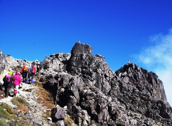 パプアニューギニア最高峰ウィルヘルム山登頂とゴロカの休日 8日間