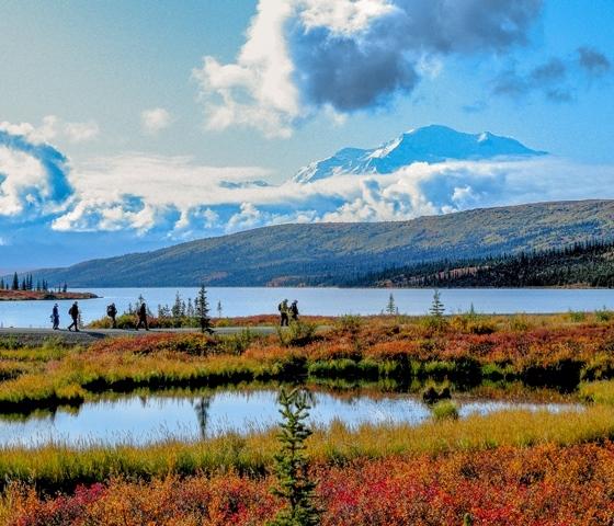デナリ国立公園最深部 キャンプ・デナリ滞在と氷河クルーズ 8日間