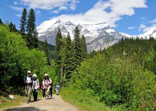 カナディアン・ロッキー最高峰Mt.ロブソンとロッキー縦断ハイキング 8日間
