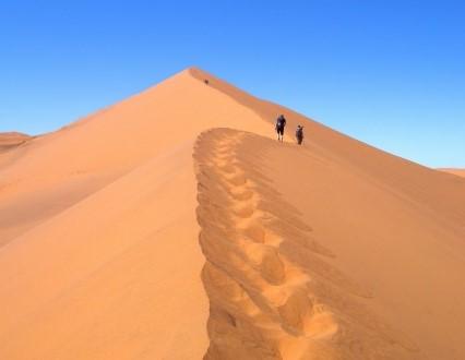 【大募集中】3月14日出発 南部アフリカ2つの世界自然遺産ナミブ砂漠とケープ半島ハイキング 10日間