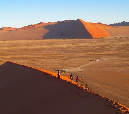 南部アフリカ周遊ハイキング ナミブ砂漠と花の楽園ナマクワランド 12日間