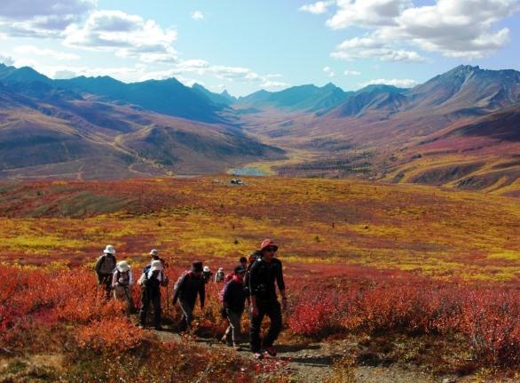 【催行予定・残席僅か】8月28日出発 悠久なる大地へ 秋のユーコン縦断ハイキング 9日間