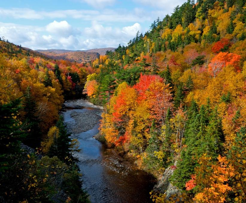 【大募集中】 10月12日出発 秋のプリンスエドワード島とアトランティック・カナダ大自然ウォーク 10日間