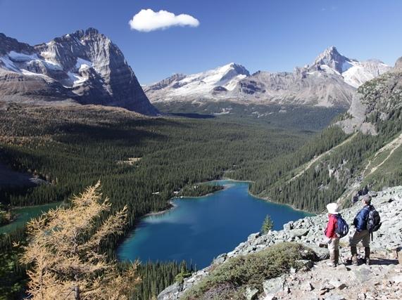 【女性1名のみ!】 9月26日出発 憧れのレイクオハラ・ロッジ滞在と秋のカナナスキス・ハイキング 9日間