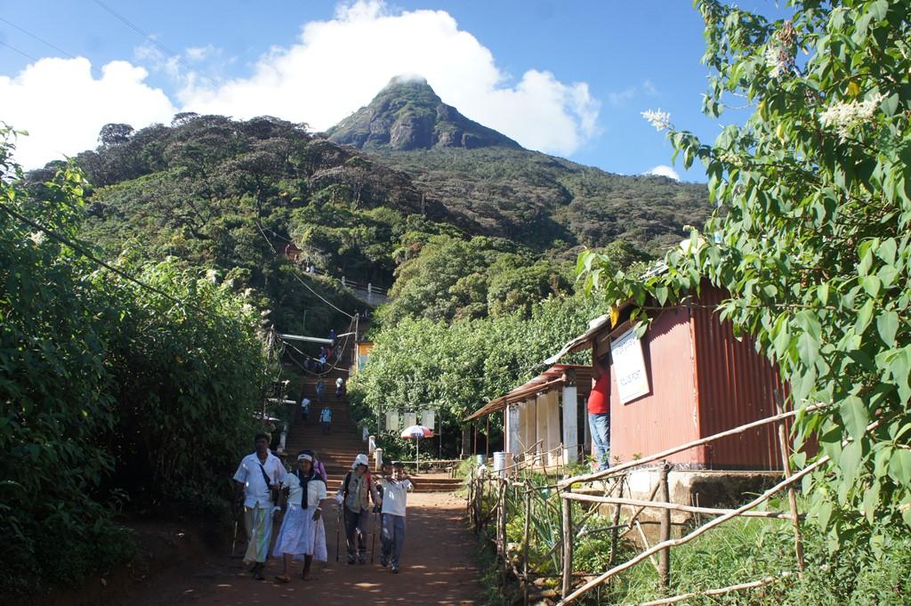 【催行間近・大募集中】3月7日出発 聖山アダムス・ピーク登頂とスリランカの5つの世界遺産 8日間